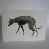 Black Greyhound With Red Collar by Anna Wilson-Patterson, Painting, Watercolour on Paper