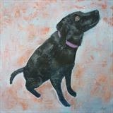 Black Labrador by Anna Wilson-Patterson, Painting, Oil on Wood