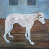 Elderly Gentleman Whippet by Anna Wilson-Patterson, Painting, Oil on canvas