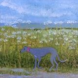 Greyhound In Cow Parsley by Anna Wilson-Patterson, Painting, Oil on Wood