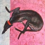 Greyhound On A Pink Blanket by Anna Wilson-Patterson, Painting, Oil on Wood