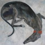 Greyhound On Duvet by Anna Wilson-Patterson, Painting, Oil on canvas