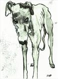 Greyhound On Stairs by Anna Wilson-Patterson, Artist Print, Hand Print