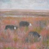 Herdwick Sheep by Anna Wilson-Patterson, Painting, Oil on canvas