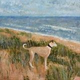 Lurcher At The Dunes by Anna Wilson-Patterson, Painting, Oil on Wood