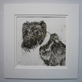 Lurcher Waiting by Anna Wilson-Patterson, Artist Print