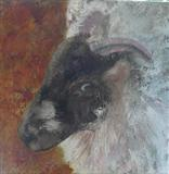 Ram by Anna Wilson-Patterson, Painting, Oil on canvas