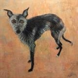 Scruffy Lurcher by Anna Wilson-Patterson, Painting, Oil on Wood