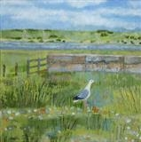The Pebble Gull by Anna Wilson-Patterson, Painting, Oil on Wood