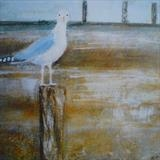 Welcome Gull Card by Anna Wilson-Patterson, Painting, Ink on Paper